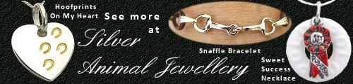 Affordable Horse Jewellery - treat yourself!